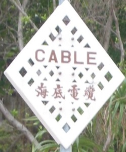 Cable- Copy